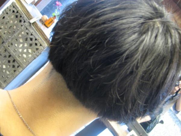 """画像 652 青い刈上げ、そして上から覆いかぶさる黒髪""""まさしく刈上げ君"""" いつもあり..."""